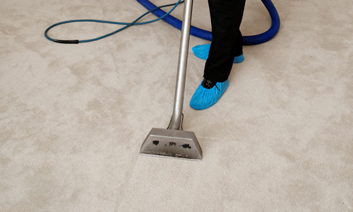 carpet cleaning services charlotte nc